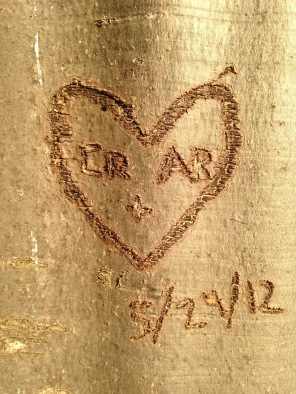 CR + AR 5/29/12 - Colton carved this tree in the Rukwa Mountains when we visited while still dating.