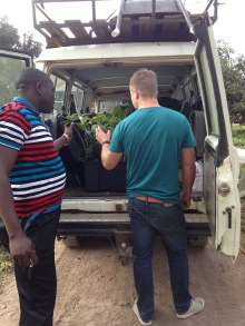 Fruit tree purchase in Morogoro