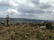 Highlands of Iringa