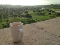 Work trip - Morning coffee looking over this view - Tarangire Safari Lodge