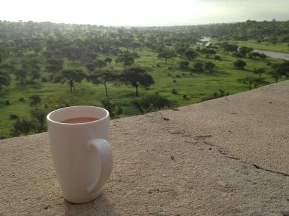 Work trip - Morning coffee looking over this view - Tarangire Safari Lodge