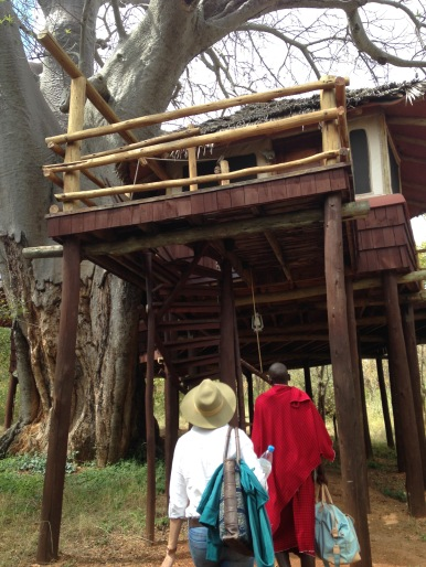 There is a reason why this lodge is called 'Tree Tops'...all the rooms are on stilts in the tree tops!