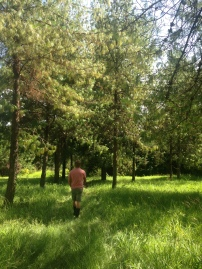Walk on the campus we live on - Southern highlands, TZ
