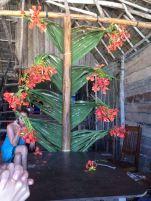 Christmas tree - Tropical Zanzibari Style!