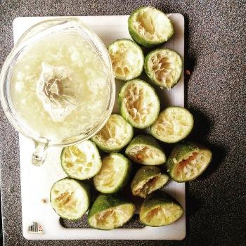 Fresh lemons - Southern TZ