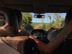 Driving through the bush