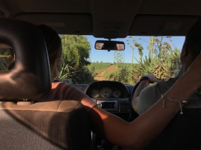 Driving through the bush