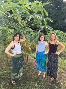 Papaya tree in the Rukwa