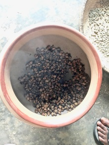 Roasting coffee from our backyard