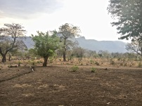 Rukwa Valley
